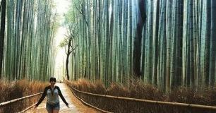 Arashiyama Bamboo Grove at Sunset (Kyoto, Japan)