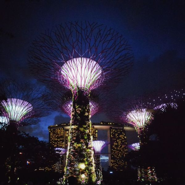 Gardens of the Bay and Marina Bay Sands Hotel  in Singapore